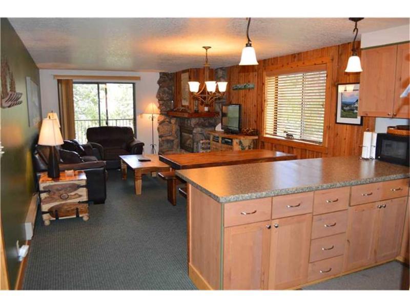Beaver Village Condominiums #1824R - Image 1 - Winter Park - rentals