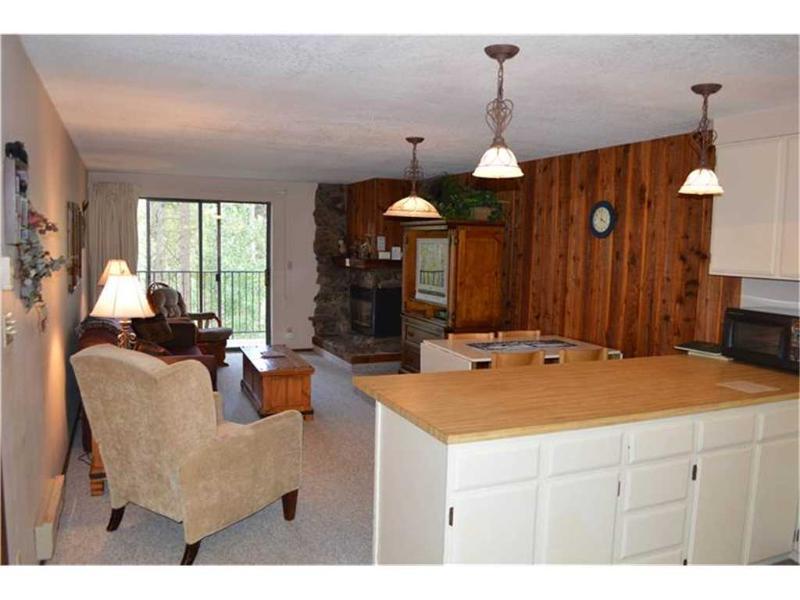 Beaver Village Condominiums #2014 - Image 1 - Winter Park - rentals