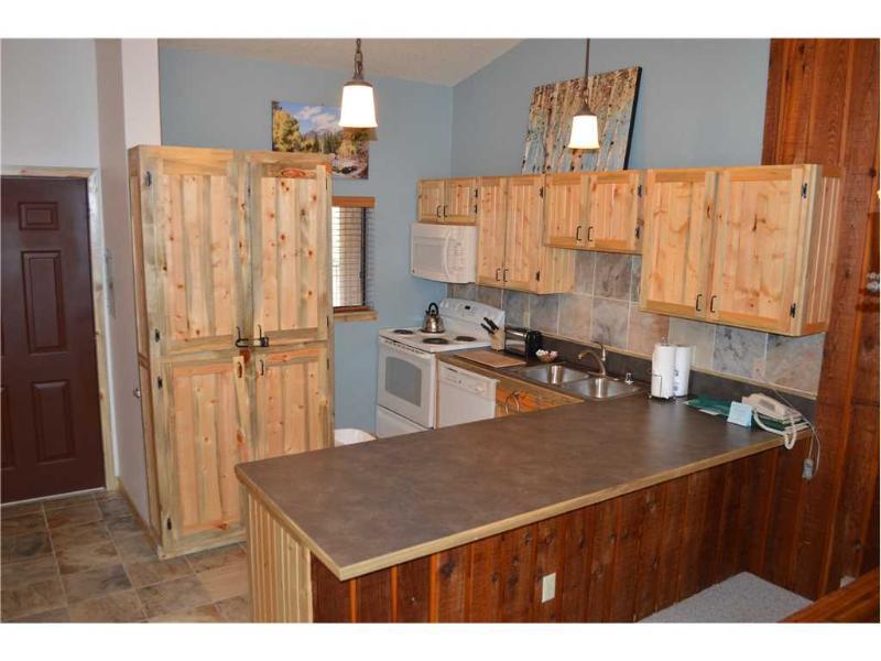 Beaver Village Condominiums #2033 - Image 1 - Winter Park - rentals