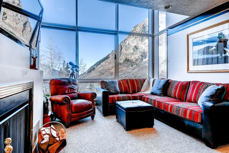 View 5 Living Area - The View #5 - Alta - rentals
