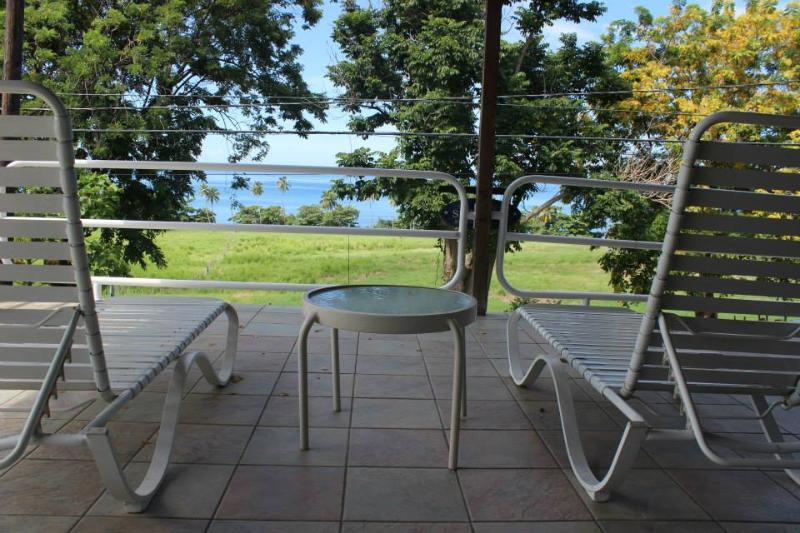 Tres Palmas View - Image 1 - Rincon - rentals
