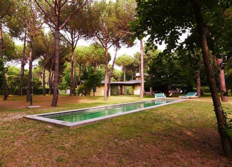 Over view of the pool - Villa Versilia - Marina dei Ronchi - rentals
