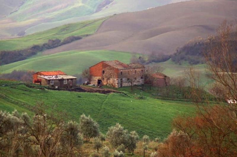 View of the villa and scenarios - Villa Pina - Greve in Chianti - rentals