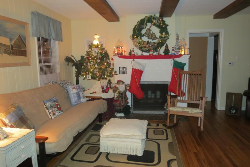 Living Room decorated for Christmas - Cozy Country Cottage PineLake - LaPorte - rentals
