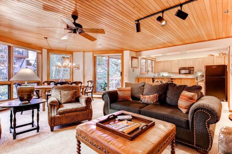 Chateau Chamonix 223 - Image 1 - Steamboat Springs - rentals