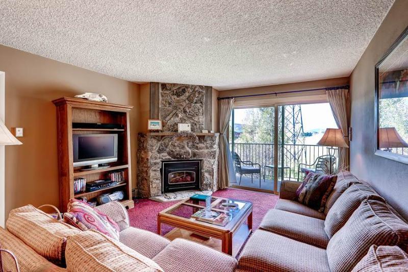 Ski Inn 313 - Image 1 - Steamboat Springs - rentals