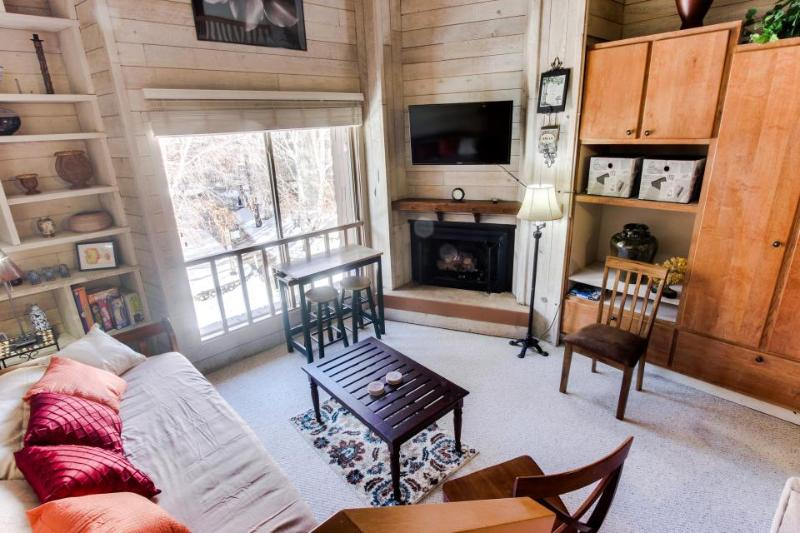 Rustic-chic studio w/loft bed, near Dollar Mountain! Includes shared pool, sauna - Image 1 - Sun Valley - rentals