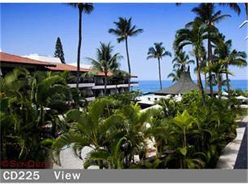 Casa De Emdeko #225 - Image 1 - Kailua-Kona - rentals