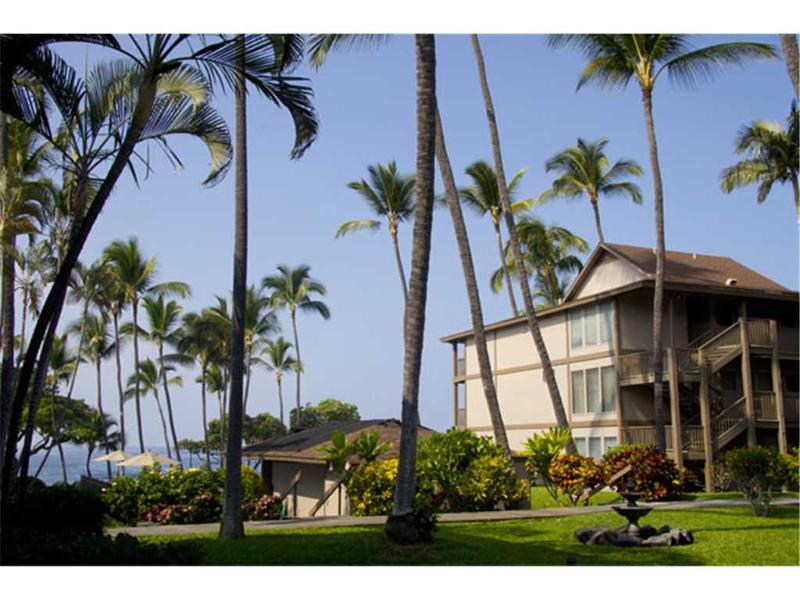 Kona Isle C6 - Image 1 - Kailua-Kona - rentals