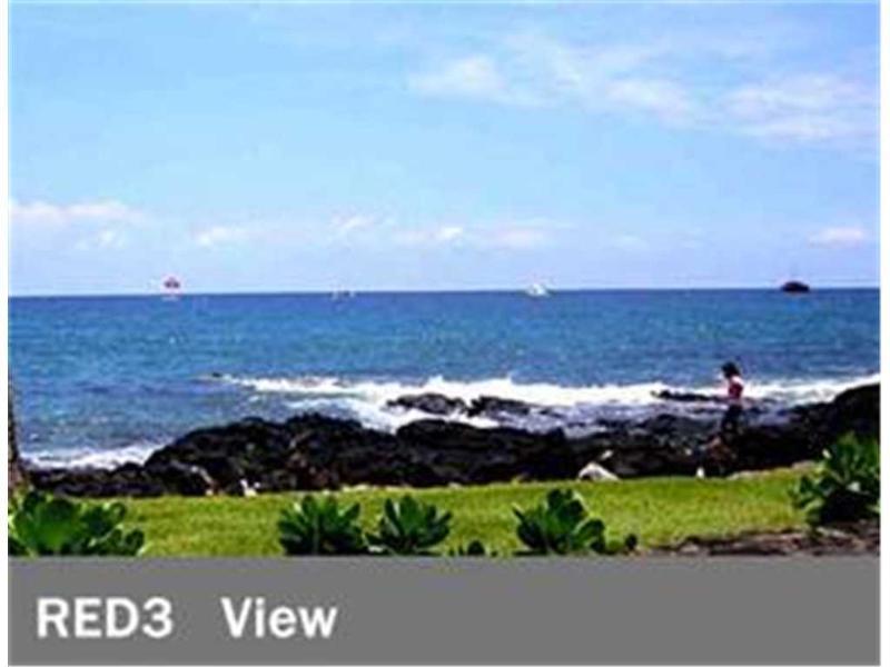 Kona Reef#D3 - Image 1 - Kailua-Kona - rentals