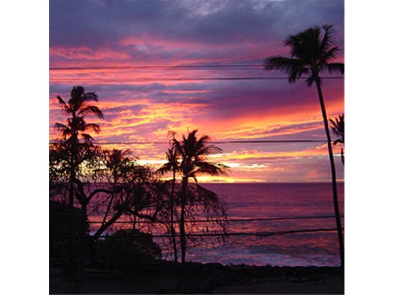 White Sands Village #101 - Image 1 - Kailua-Kona - rentals