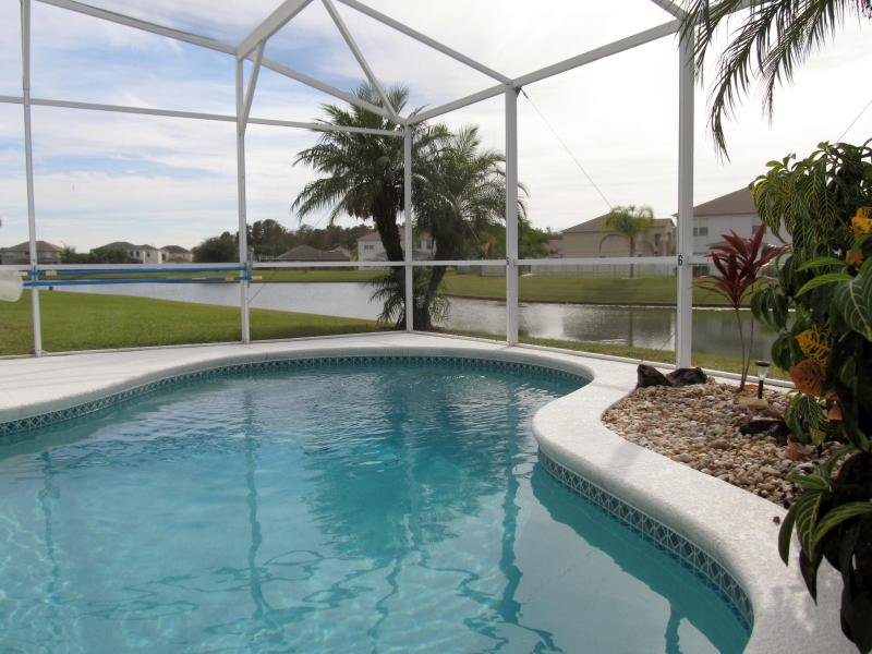 South West facing private pool overlooking pond - Private pool South/West facing overlooking pond. 4 bed home - Kissimmee - rentals