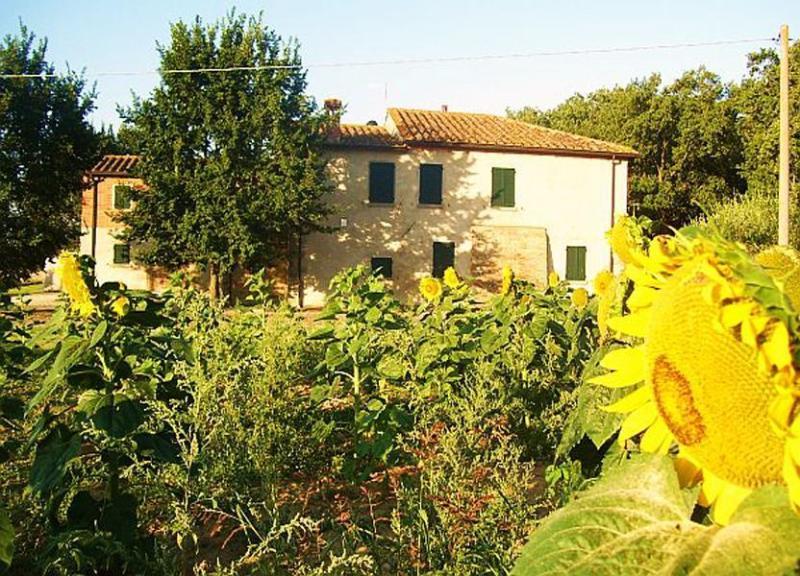 Main view of the villa - Villa Norella - Cortona - rentals