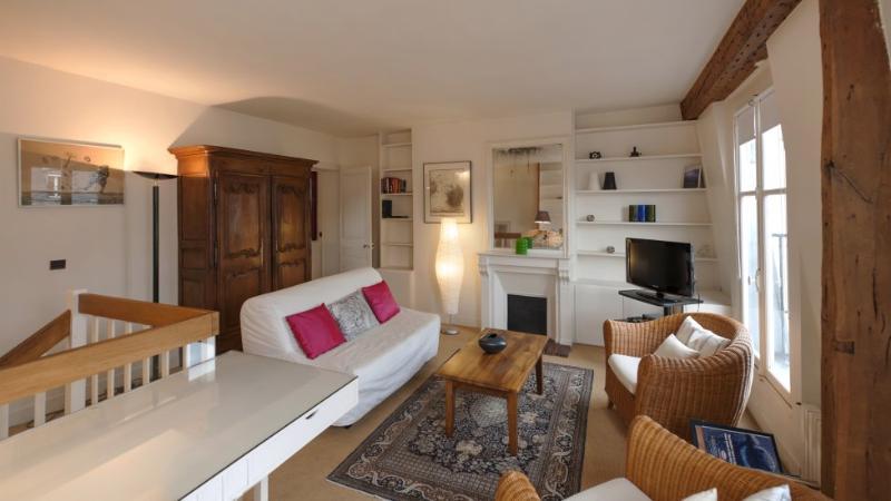 Two bedrooms  2 bath  Paris Latin quarter district (516) - Image 1 - Paris - rentals