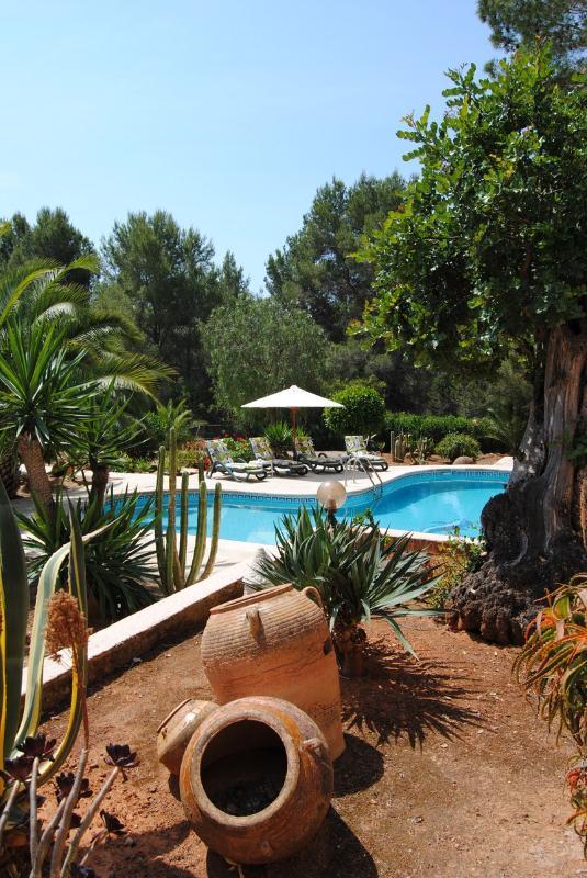 Villa Cox - Villa Cox 617 - Ibiza Town - rentals