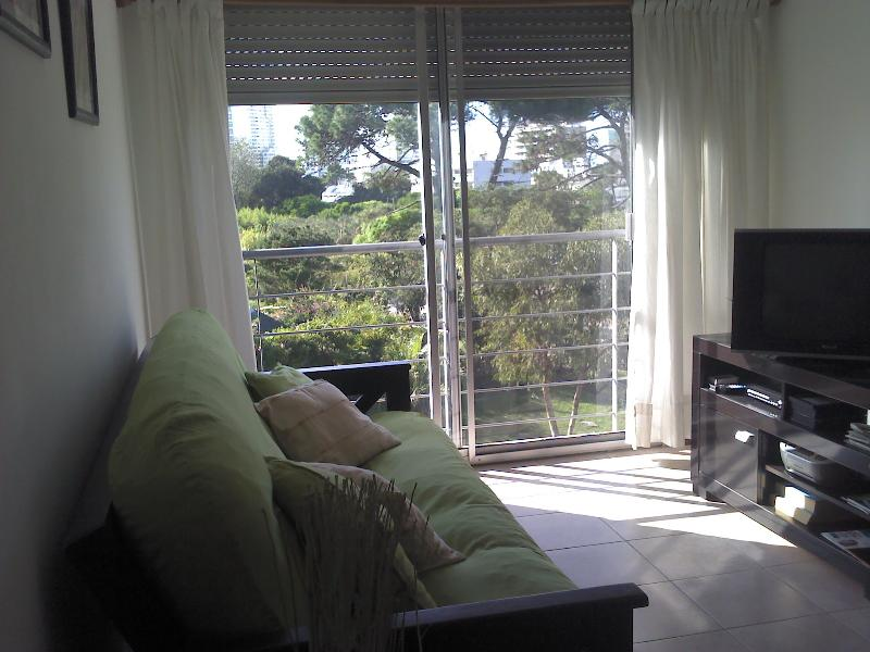 Beautiful apartment in quiet residential area - Image 1 - Punta del Este - rentals