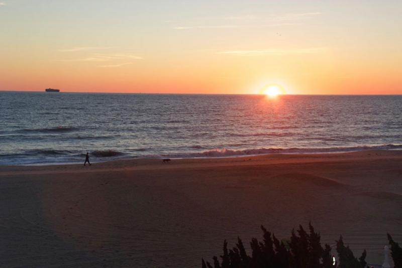 OCEANFRONT Studio 304 . Beach and Ocean Views - Image 1 - Virginia Beach - rentals