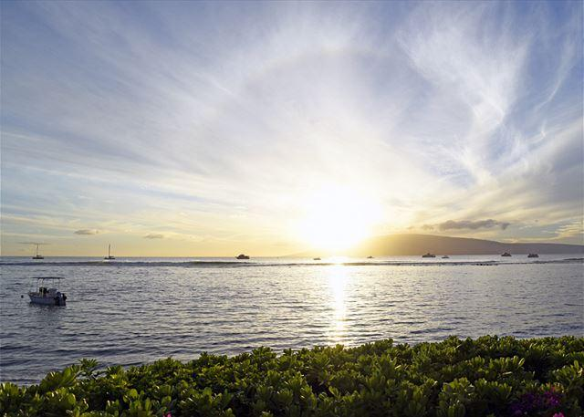 $99 per night Through Summer!!! In The Heart Of Lahaina... - Image 1 - Lahaina - rentals