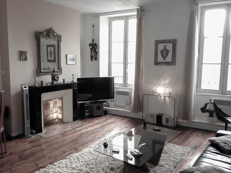 Luxury apartment-heart of Bordeaux-classified 3*** - Image 1 - Bordeaux - rentals