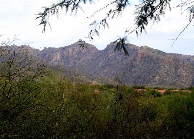 2nd Floor 3 bedrm-Mountain Views with High End upgrades including Wood Floors - Image 1 - Tucson - rentals