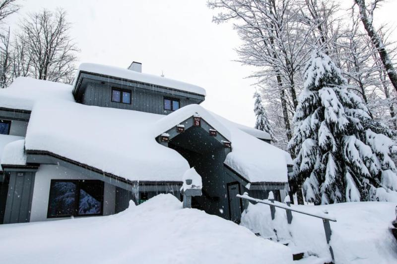 Cozy ski chalet w/ shared pool, sauna, & tennis. Dogs welcome! - Image 1 - Killington - rentals