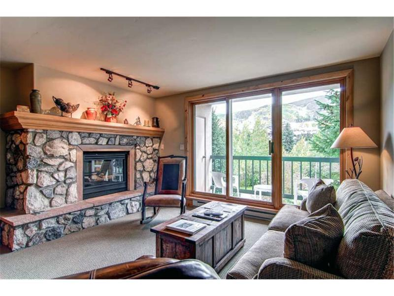 Borders Lodge - Lower 208 - Image 1 - Beaver Creek - rentals