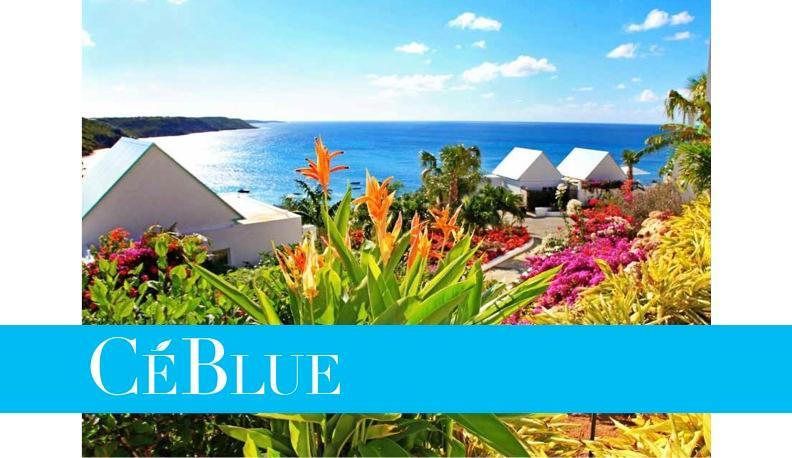 Villa CéBlue (Paradise) - Image 1 - Anguilla - rentals