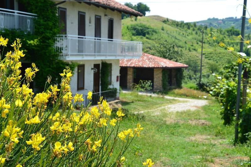Cascina Bricchetto Langhe - The Grape Pergola House - Luxury Stone Farmhouse:  Langhe-Italy, wine  area - Trezzo Tinella - rentals