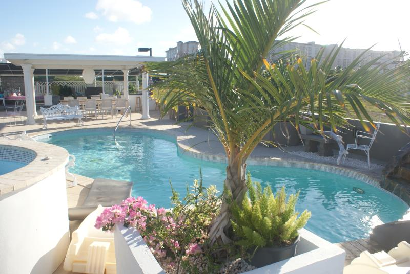 back garden pool - PALM BEACH, MODERN WORLD ARUBA - Palm/Eagle Beach - rentals