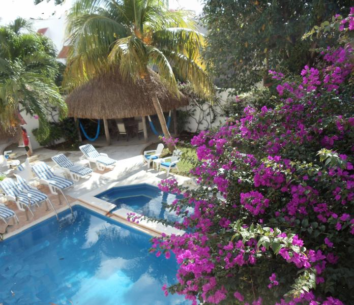 A view of the pools and the palapa roofed patio from upstairs - 2 level-pool, fountain, garden - no booking fee - Cozumel - rentals