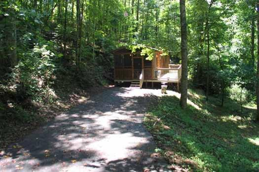 ANGEL'S DREAM - Image 1 - Pigeon Forge - rentals