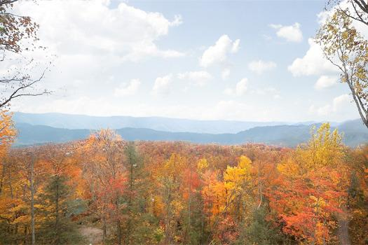 5 STAR VIEW - Image 1 - Gatlinburg - rentals