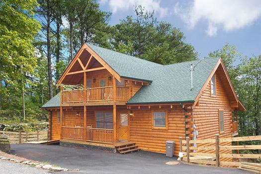 LOG WILD! - Image 1 - Pigeon Forge - rentals