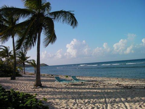 Relax and snorkel in the privacy of Pelican Cove beach. - Dolphin's Paradise at Pelican Cove - Christiansted - rentals