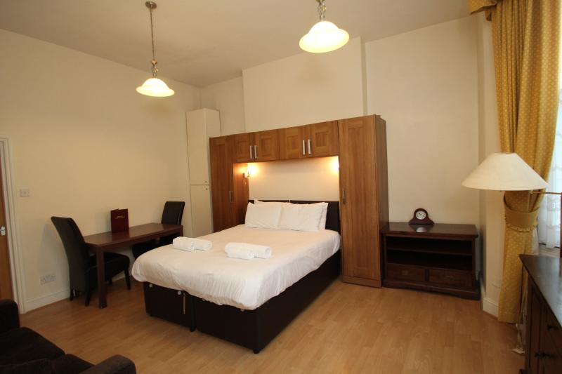 Castletown House Family London Studio Apartment - Image 1 - London - rentals