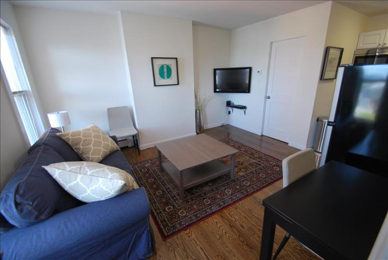 South Boston Furnished Apartment Rental - 538 East Broadway Unit 8 - Image 1 - Boston - rentals