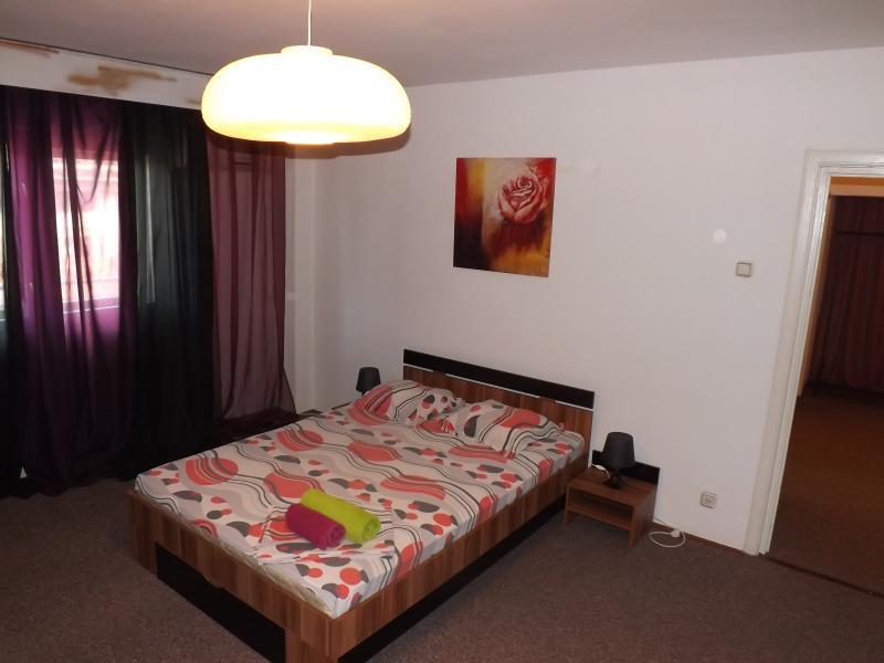Caesar's Apartments in Bucharest - Golden Union St - Image 1 - Bucharest - rentals