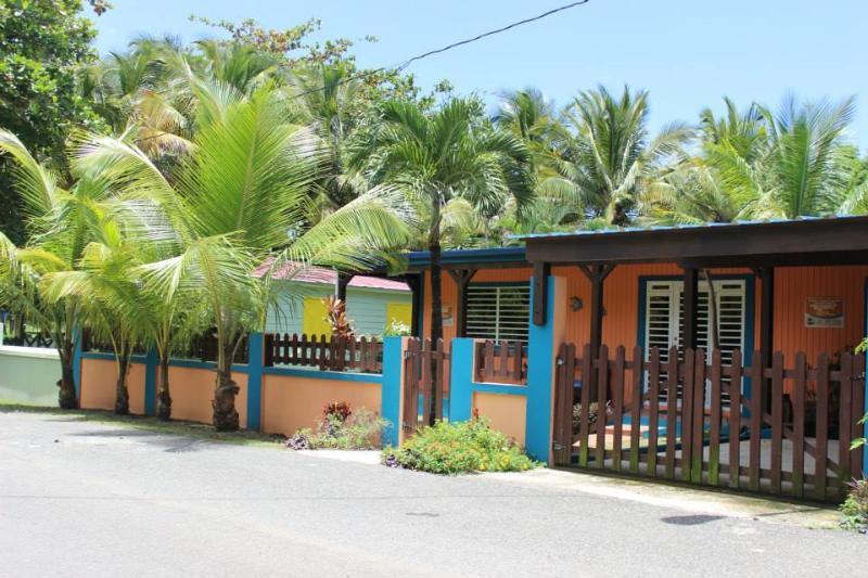 Casa Las Mareas - 45 seconds from the beach - Image 1 - Rincon - rentals