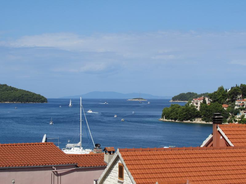 Apartment with a beautiful terrase sea view-wi fi - Image 1 - Vela Luka - rentals