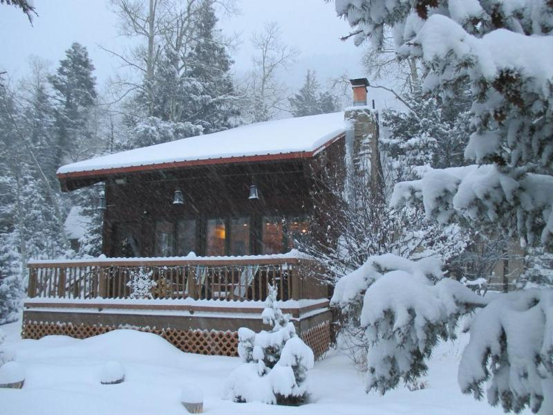 Front Porch - Cozy Taos Ski Valley Family Cabin - Taos Ski Valley - rentals