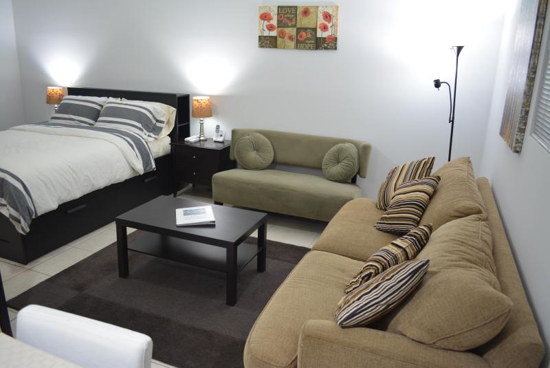 Living room- Love sit & sofa bed - Miami studio for rent, Days,Weeks - Coconut Grove - rentals
