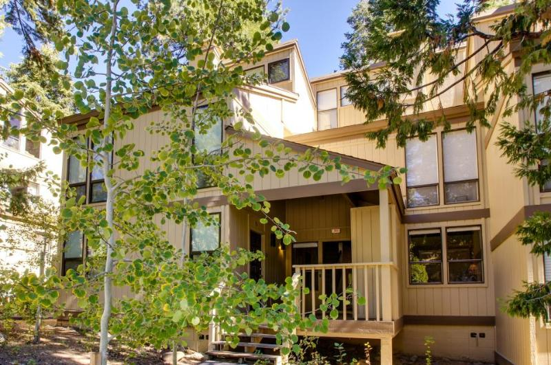 Streamside Townhome - Image 1 - Kings Beach - rentals