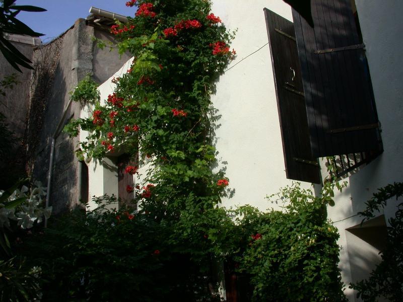 Medieval Garden & Sun - Sun & Garden in Medieval Village - South of France - Herault - rentals