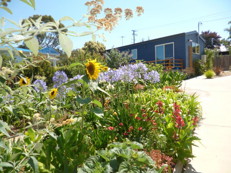 19 Blue is in a Lovely Garden! - 19 Blue - Hobart - rentals