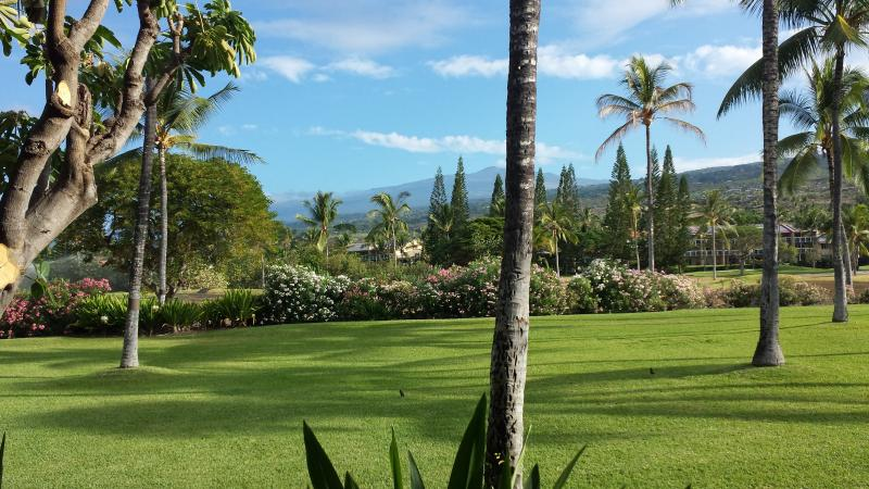 View from main lanai - Kanaloa1302  - Steps to the Ocean ! 2B/2B - Kailua-Kona - rentals