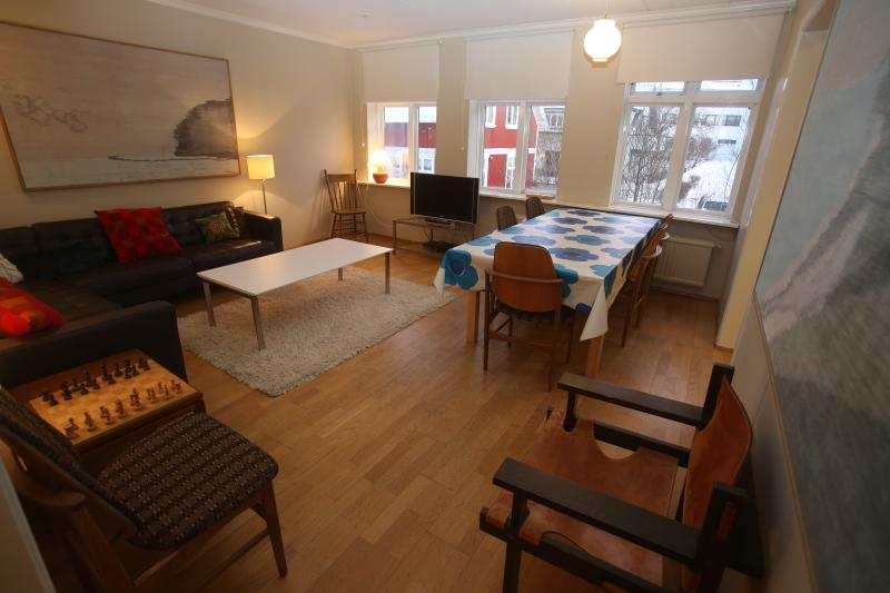 Liiving and Dining room - Reykjavik 3 Bedroom Apartment in Perfect Location - Reykjavik - rentals