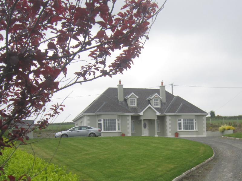 Front of home - Rural/ mountain  bordering Wexford/Carlow/Wicklow - Bunclody - rentals