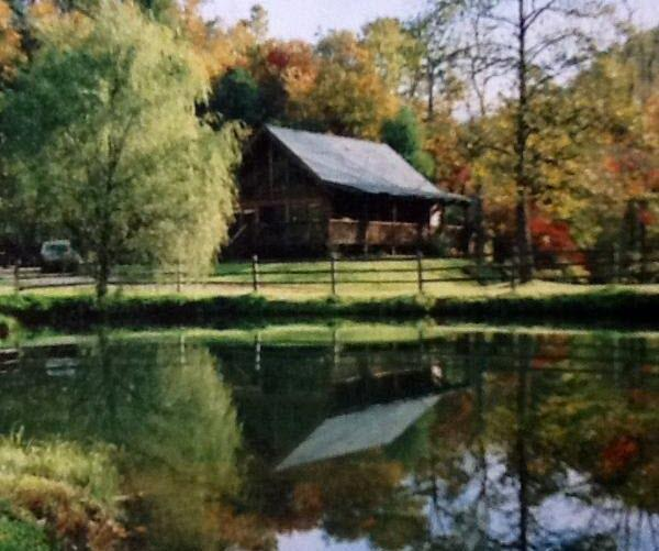 Cabin in the fall - Private Equestrian Estate - Tranquil Getaway - Brevard - rentals