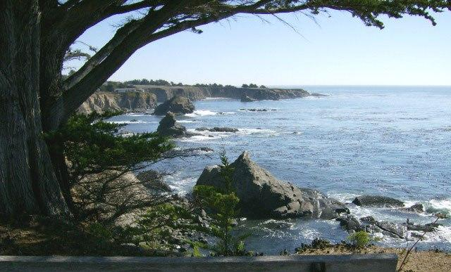 view from bench on the bluff--no fence! - Sea Gate - Sea Gate - Gualala - rentals