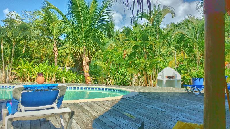 Relax on the private pool - Villa Deliciosa - Las Terrenas - rentals